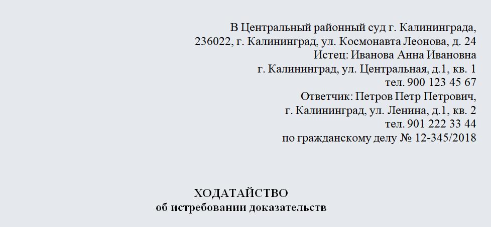 Ходатайство об истребовании технического паспорта. Часть 1
